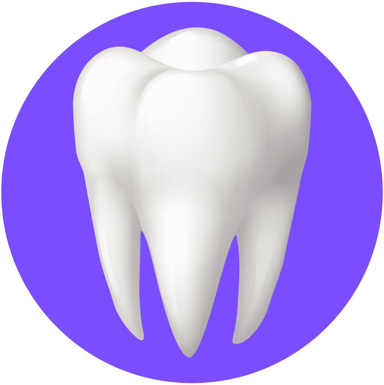 دندانپزشکی دکتر فرشاد نیک نژاد logo